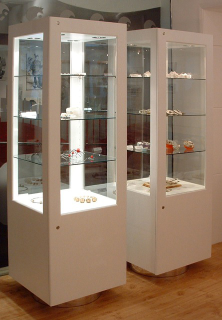 Rochester-art-gallery-display-cabinets